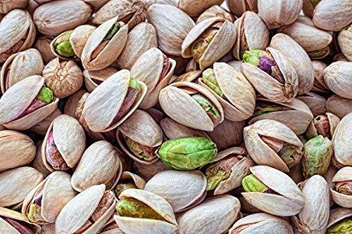PLAT FIRM SEMILLAS DE GERMINACION: Ãrbol de nuez Semillas de pistacho Pistacia árbol exterior frutal raro 10 semillas