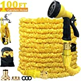 Alittle 100ft Expandable Garden Hose Pipe/Flexible Lightweight Water Hose With Brass Fittings/8 Modes
