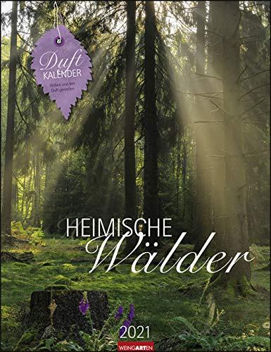Heimische Wälder - Rita Bellmann - Kalender 2021 - Weingarten-Verlag - Duftkalender mit wunderschönen Aufnahmen und Zitaten - 29,8 cm x 38,8 cm