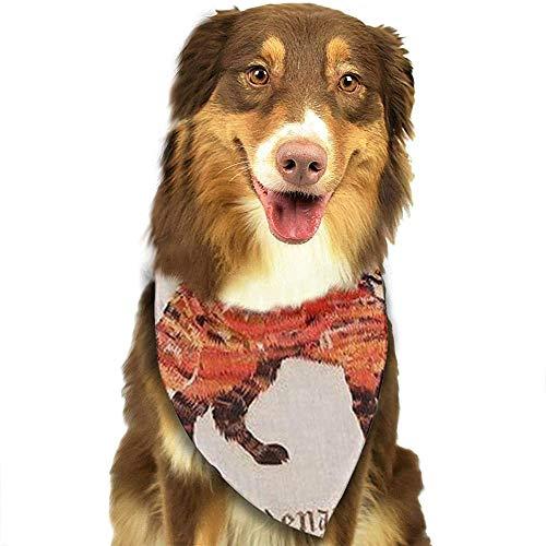 YAGEAD Hund Bandana Welpe und Haustier Bandanas, lustige Vintage Fox Comfort Short Plüsch Haustier Schal
