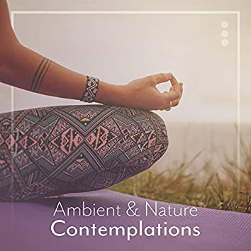 Ambient & Nature Contemplations: New Age Yoga Music Selection 2019 for Meditation & Relaxation, Spiritual Journey, Chakra Healing, Inner Balance & Harmony