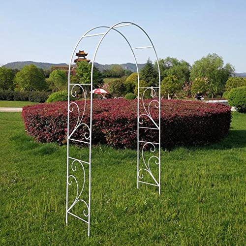 LILL Metal Garden Arch Freely Various Climbing Plant Indoor Tubular Arbor For Roses Climbing Plants Support Archway Garden Decoration