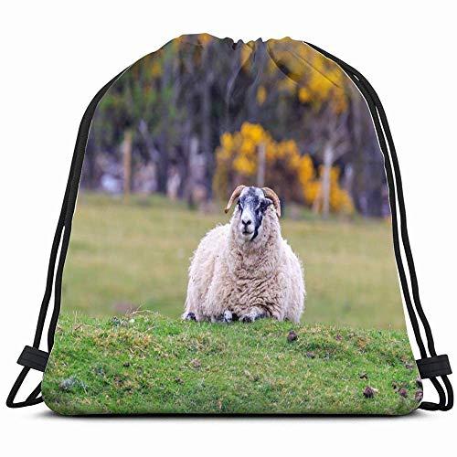 Scottish Blackface Sheep Standing Meadow Animals Wildlife Agriculture Nature Drawstring Backpack Bag Sackpack Gym Sack Sport Beach Daypack For Girls Men & Women Teen Dance Bag Cycling Hiking Team Trai
