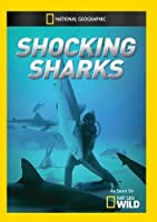 Shocking Sharks [DVD] [Import]