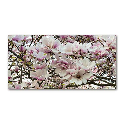 Tulup Impresión en Vidrio - 100x50cm - Cuadro Pintura en Vidrio - Cuadro en Vidrio Cristal Impresiones - Flores y Plantas - Blanco, Blanca - Flores de Magnolia