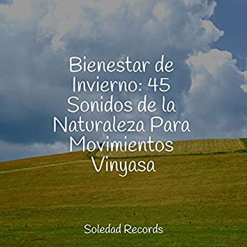Bienestar de Invierno: 45 Sonidos de la Naturaleza Para Movimientos Vinyasa