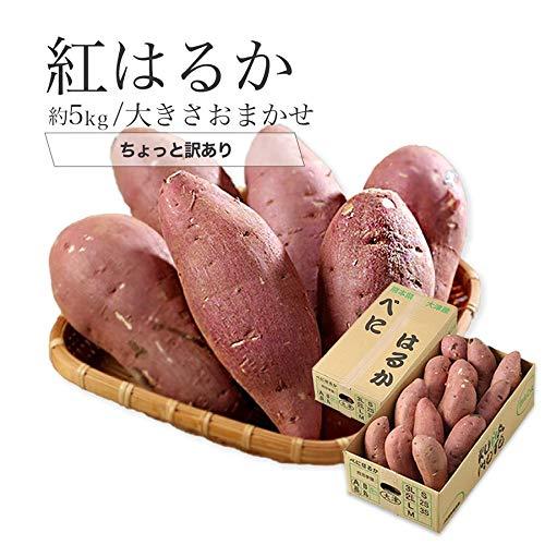 紅はるか 熊本県 大津産 JA菊池 ちょっと訳あり 大きさおまかせ 約5kg べにはるか 芋 さつまいも