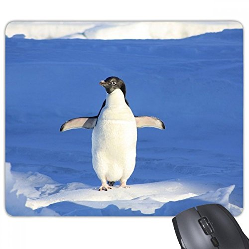 Schattig wit pinguïn wetenschap natuurbeeld rechthoek anti-slip rubber muismat spel muismat Gift