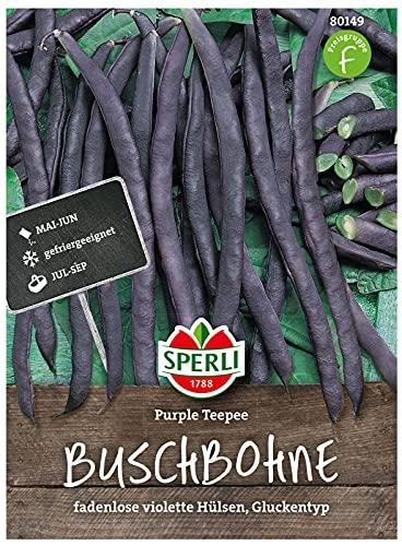 80149 Sperli Premium Buschbohnen Samen Purple Teepee | Guter Geschmack | Fadenlos | Buschbohnen Samen ohne Fäden | Ackerbohnen Saatgut