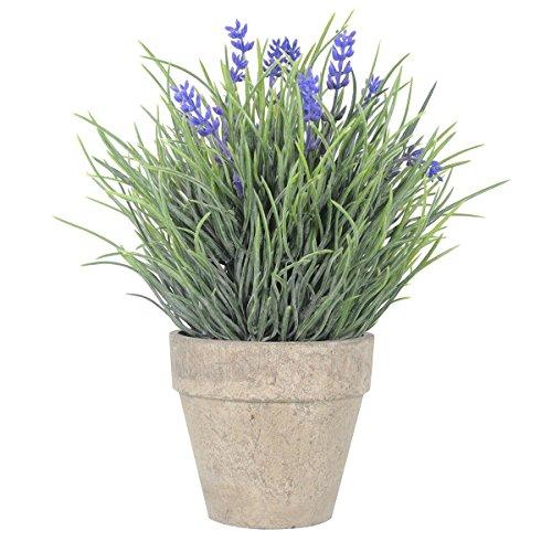 WINOMO Künstliche Blumen Plastik Lavendel Arrangements in Töpfen für Haus Gartendekoration, Bblau)