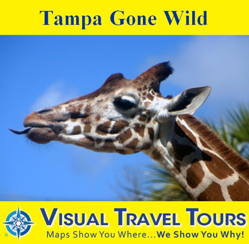 Tampa Gone Wild: A Self-guided Pictorial Sightseeing Tour (Tours4Mobile, Visual Travel Tours Book 252) (English Edition)