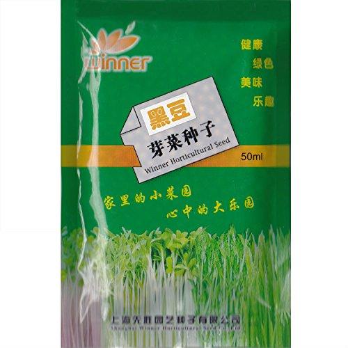 Noir soja Pousses Seed * 1 paquet (50 ml) Graines * Glycinemax * Non-OGM Heirloom * Seed Samen * Livraison gratuite *