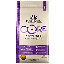 Wellness Core Grain-free kitten food
