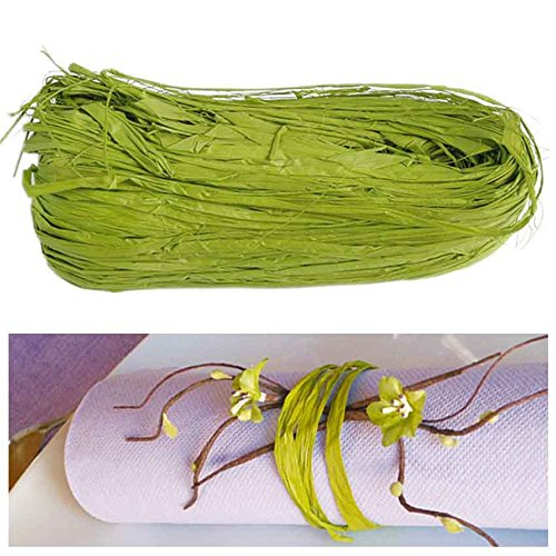 jakopabra Natur-Bast 4mm farbig - 50g - viele Farben, Raffia (Grün)