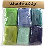 Woolbuddy Needle Felting Wool Roving Spring Color, Beautiful Felting Wool, Instruction Teach You How to Mix...