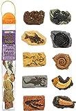 Safari Ltd 684804Tubo Antichi fossili