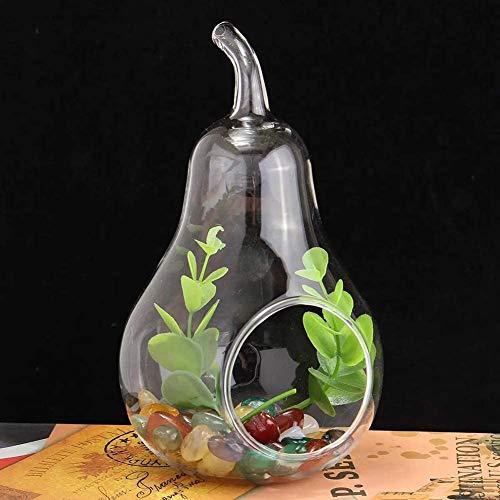 Cestbon Terrario de la Planta de Cristal de Vidrio para recipientes Planta Recipiente florero hidropónica Boda del florero Ornamento Juicy Cubierta Botella de Vidrio Vegetal jardín hidropónico,Clear