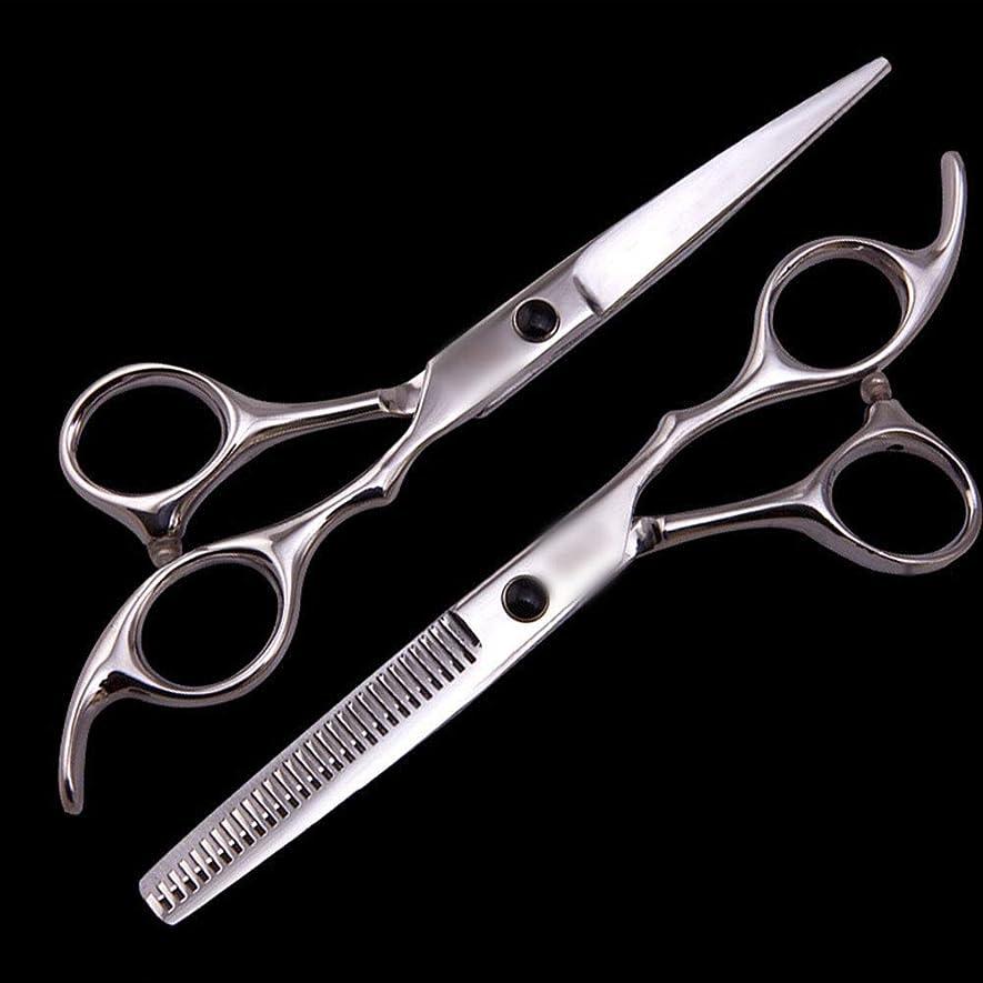 不快な予算与える6インチ美容院プロフェッショナル理髪セット、理髪ツールフラットせん断+歯せん断セット モデリングツール (色 : Silver)