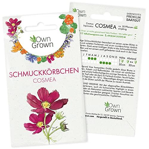 Cosmea Samen Bunt: Premium Schmuckkörbchen Cosmeen Samen für 100x blühende Schmuckkörbchen Pflanze – Essbare Blumen Samen – Bunte Blumensamen Schmuckkoerbchen Saatgut – Wiesenblumen Samen von OwnGrown