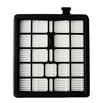 Podoy F45 Vacuum Filter Compatible with Dirt Devil Pets Canister SD40000 & EZ Lite Canister SD40010 2KQ0107000 2-KQ0107-000 F45 F-45