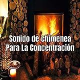 Sonido de chimenea Para La Concentración
