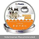 Best Flea Collar For Dogs - Dog Flea and Tick Collar - Flea Review