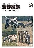 動物家族~アフリカ編~シマウマ [DVD] image