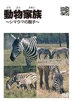 動物家族~アフリカ編~シマウマ [DVD]