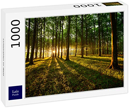 Lais Puzzle Lichtstrahlen im Wald 1000 Teile