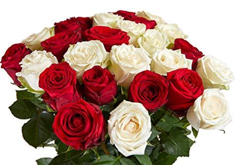 Flower Explosion 50 Roses