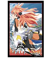 ブシロードスリーブコレクションHG (ハイグレード) Vol.310 戦姫絶唱シンフォギア 『天羽 奏』