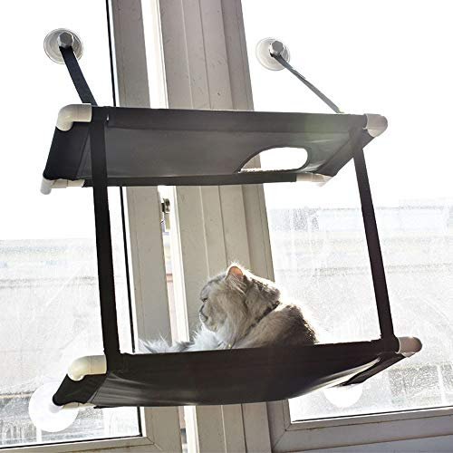 Gatto Persico Amaca con balcone Materassino da arrampicata Pet Cat Climbing Materasso in velluto di corallo Cat Bed Single Double Amaca per animali domestici