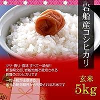 【父の日 プレゼント・カード付】岩船産コシヒカリ 5kg 玄米・贈答箱入り/ギフト・贈答においしい新潟米を