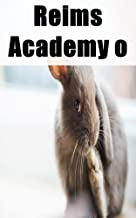 Reims Academy of Magic or A Girl in Trouble (Basque Edition)