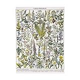 zaishuiyifang Cartel Sin Marco De Setas De Frutas Vegetales Vintage, Pintura En Lienzo Impresa, Decoración De Pared para El Hogar, Cuadros Artísticos De Pared Sin Marco A818(50X70Cm)