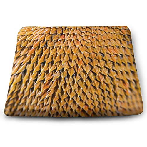 Unique Bearded Dragon Close Up Lizard Print Chair Seat Cushions Pads Set Of 4 Memory Foam Office Dining Kitchen Soft Chair Cushion for Pressure Relief, Wheelchairs, Car, Outdoor, Floor, Lawn, Non Slip