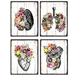 Shabby Chic Anatomy Wall Art Poster Set - 8X10 Rustic Pictures for Medical Clinic, Dr Office - Gift...