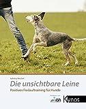 Die unsichtbare Leine: Positives Freilauftraining für Hunde