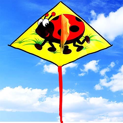 Bleyoum Cometas Niños Cometa Al por Mayor Ladybug Delta Kite Ripstop Tela De Nailon Juguetes Voladores Al Aire Libre Kite Thread Factory Kiteboard