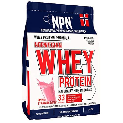 NPN Whey Protein Powder | Proteina di siero di latte di alta qualità norvegese | Proteine in polvere per la costruzione muscolare con aminoacidi essenziali | 33 porzioni | 908 g Di fragole fresche