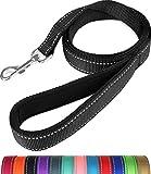 Taglory Reflective Dog Training Lead, Neoprene Padded Handle and Metal Hook, 1.2 m x 2.0 cm Nylon Leash for Small Dogs, Black