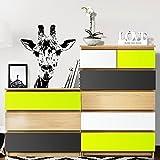 Grandora Möbelfolie 3-farbig passend für IKEA MALM Kommode I Farbset 4: Mint, dunkelgrau, weiß I Möbelaufkleber Möbelsticker Kinder Aufkleber Sticker W5232