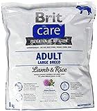 BURBERRY Brit Care Adult Large Breed Nourriture pour Chien, Agneau et Riz, 1kg