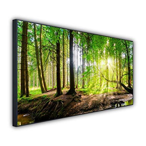 STEINFELD Heizsysteme® Elektro Heizung Glas Bild Infrarotheizung inklusive Thermostat | Deutscher Hersteller | Motive 067 Wald Panorama (900 Watt, schwarz)
