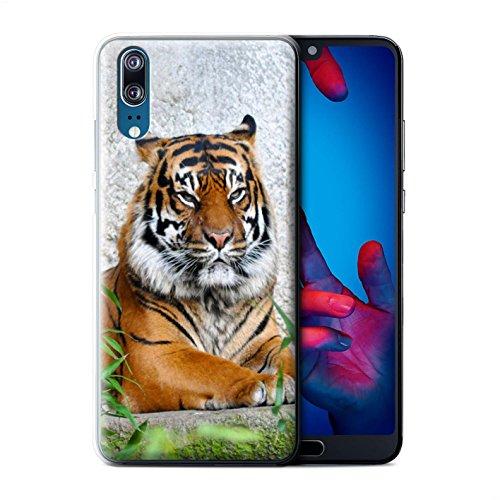 Stuff4 - Funda para teléfono HUAGP-CC, colección Animals Tigre Huawe