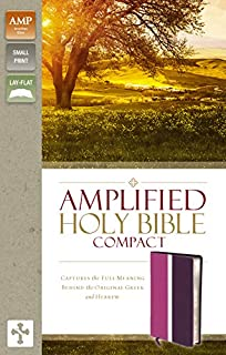 Amplified Holy Bible, Compact, Imitation Leather, Pink/Purple: Captures the Full Meaning Behind the Original Greek and Hebrew (Small Print)