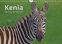 Kenia - Die Tiere der Savanne (Wandkalender 2022 DIN A4 quer): Portraits der schoensten Tiere Kenias. (Monatskalender, 14 Seiten )