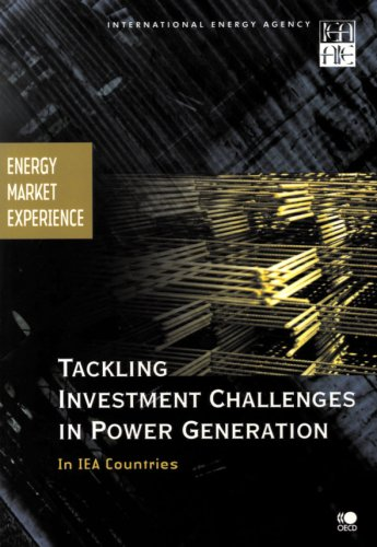 Tackling Investment Challenges in Power Generation in IEA Countries: Energy Market Experience (International Energy Agency)