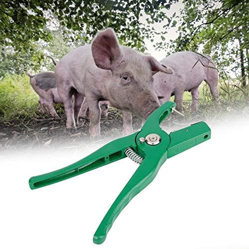 Changor Abrigo de la Etiqueta de Oreja Verde, Hecha de aleación de Aluminio Servicio de Vida Tamaño Tamaño Tallo de Acero para Animales de Granja