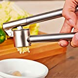 Ikea KONCIS Garlic Press Stainless Steel 16 cm